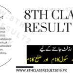 Sargodha Board 8th Class Result 2019